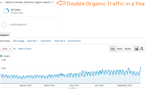 Double Organic Traffic in a Year